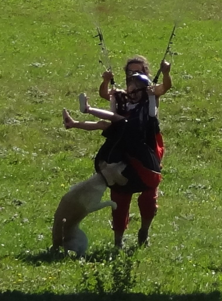 16 Sep 2012<br>Giving another short paragliding flight to my 6-years old niece Eulalie, a dog came and tried to eat the harness!<br>Vercors