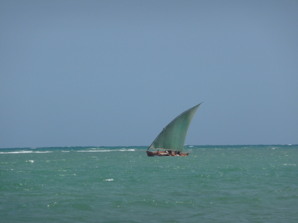 Synonymous sails of sinners in Senegal, Brazil Wed <br> Ilha de Itaparica, Salvador de Bahia, Brazil by Google Translate