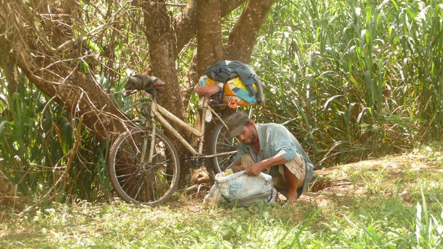 15 Mar 2009<br>Nivaldo also travel by bicycle, and came from Minas Gerais in two months, where he worked. He stops at his home soon, more than two days. Like all Latin American cyclovoyageurs he leaves his bike in the lower rise. Normal, it does not speed! <br> Andira, Parana, Brazil