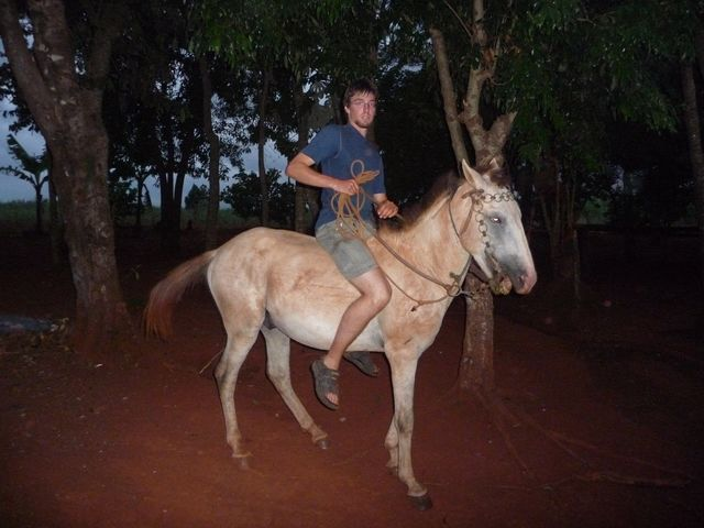 Frank is very search engine in its horsepower. This one tries to be considered too poor and too expensive to hire. <br> Frank IS very keen on getting a horse, really dislike ET biking. He tries one goal far too expensive to rent it, and not so good anyway. <br> Minga Guazu, Paraguay