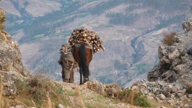 22 Oct 2009<br>A man drops his load of wood from the mountains to the village, aided by his faithful destrier.Cusco, Peru