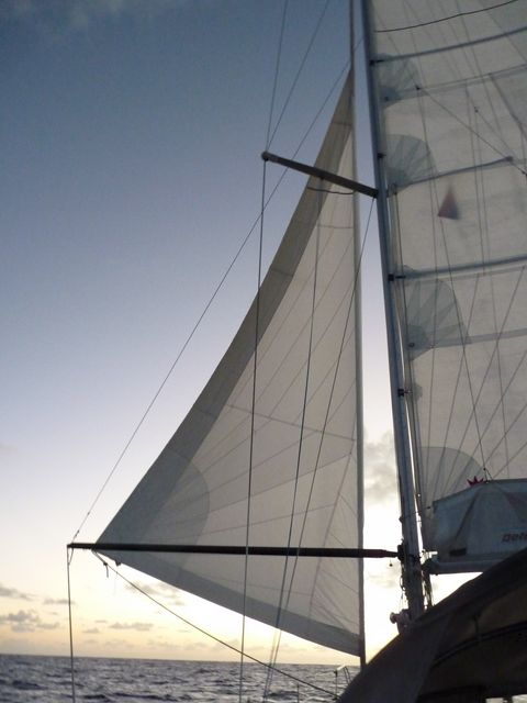 04Le is our genoa headsail. Here it is looking for a pole 'Butterfly' downwind, the mainsail is on the side tribord.Voilier Tago Mago, Pacific Crossing between Galapagos and the Marquesas