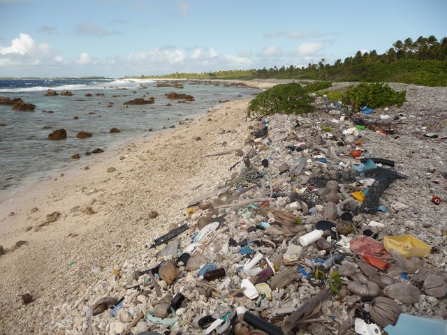 17 Jul 2010<br>Lost on a Pacific atoll, admire the waste of all Sotres on the beach, mostly plastic. The pollution is global, we must stop using this poison on the planet! So are we gone mad? Makemo, Tuamotu Archipelago.